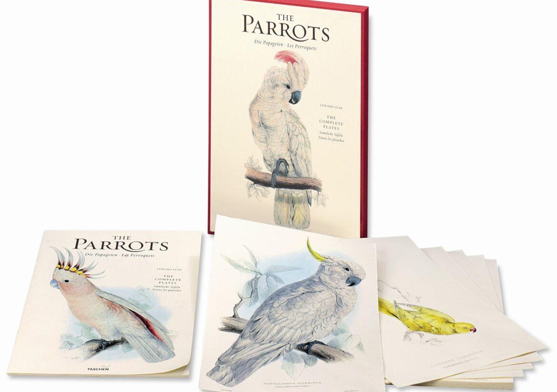 Karmy dla papug 20 kg