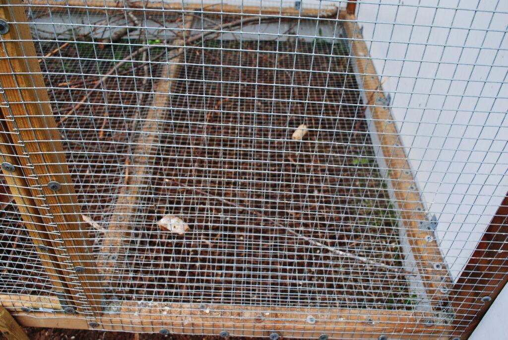 Czyszczenie klatki dla papugi